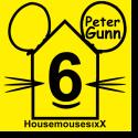 Cover: HousemousesixX - Peter Gunn