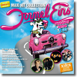 Cover: Formel Eins Maxi Hit Collection - Various Artists