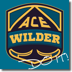 Cover: Ace Wilder - Do It