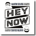Cover: Martin Solveig & The Cataracs feat. Kyle - Hey Now