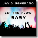 Cover:  Javid Senerano - Get the Flow, Baby