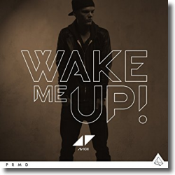 Cover: Avicii feat. Aloe Blacc - Wake Me Up