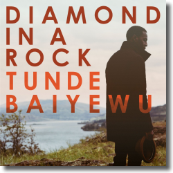 Cover: Tunde Baiyewu - Diamond In A Rock