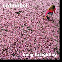 Cover: Erdmöbel - Kung Fu Fighting