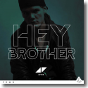 Cover:  Avicii - Hey Brother