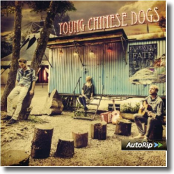 Cover: Young Chinese Dogs - Farewell To Fate