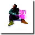 Cover:  DNV - Reach The Sky