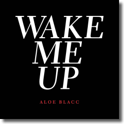 Cover: Aloe Blacc - Wake Me Up (Acoustic)