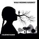 Cover:  Was Wenns Regnet - Falsche Nasen