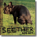 Cover:  Seether - Seether 2002-2013