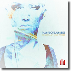 Cover: Tha Groove Junkeez feat. Voice JLuv - Break The Night