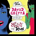 Cover:  David Guetta feat. Skylar Grey - Shot Me Down