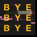 Cover: 2raumwohnung - Bye Bye Bye