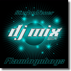 Cover: Flamingoboys - Sternenfeuer (DJ Mix 2014)
