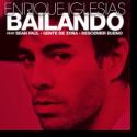 Cover:  Enrique Iglesias - Bailando