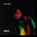 Cover: Robin Thicke - Paula
