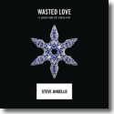 Cover:  Steve Angello feat. Dougy - Wasted Love