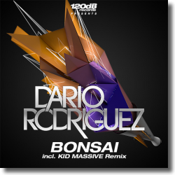 Cover: Dario Rodriguez - Bonsai