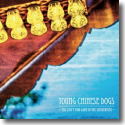Cover: Young Chinese Dogs - You Can't Find Love In The Summertime