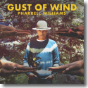 Cover: Pharrell Williams feat. Daft Punk - Gust Of Wind