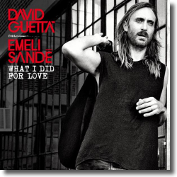 Cover: David Guetta feat. Emeli Sandé - What I Did For Love
