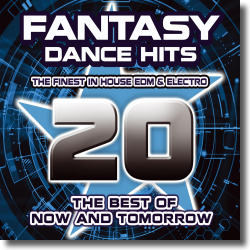 Cover: Fantasy Dance Hits Vol. 20 - Various Artists