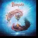 Cover:  Illuminata - Where Stories Unfold