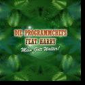 Cover:  Die Programmchefs feat. Harry - Mein Gott Walter!