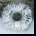 Cover:  David Pfeffer - View