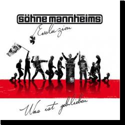 Cover: Söhne Mannheims - Was ist geblieben