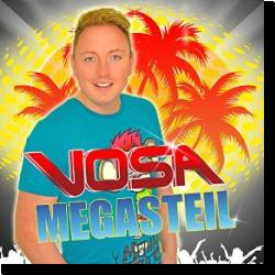 Cover: Vosa - Megasteil