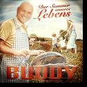 Cover:  Buddy - Der Sommer unseres Lebens