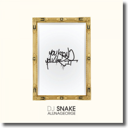 Cover: DJ Snake & AlunaGeorge - You Know You Like It