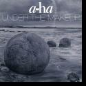 Cover:  a-ha - Under The Makeup