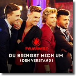 Cover: Feuerherz - Du bringst mich um (den Verstand)