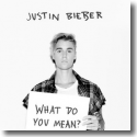 Cover: Justin Bieber - What Do You Mean?