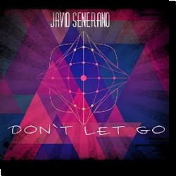 Cover: Javid Senerano - Don't Let Go