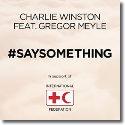 Cover: Charlie Winston feat. Gregor Meyle - Say Something