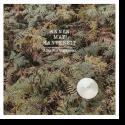 Cover: AnnenMayKantereit - Alles Nix Konkretes