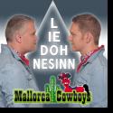 Cover:  Mallorca Cowboys - Lied ohne Sinn