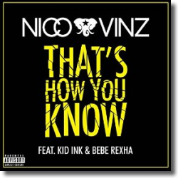 Cover: Nico & Vinz feat. Kid Ink & Bebe Rexha - That's How You Know