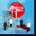 Cover: VAIT - Sei dankbar