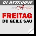 Cover: DJ Ostkurve feat. Acarina - Freitag du geile Sau