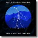 Cover: Calvin Harris feat. Rihanna - This Is What You Came For