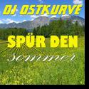 Cover: DJ Ostkurve - Spür den Sommer
