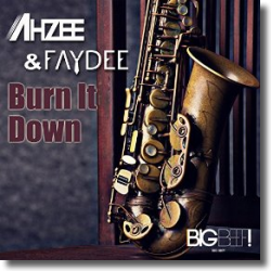 Cover: Ahzee & Faydee - Burn It Down