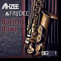 Cover:  Ahzee & Faydee - Burn It Down