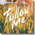Cover: Pulsedriver & Chris Deelay - Follow Me