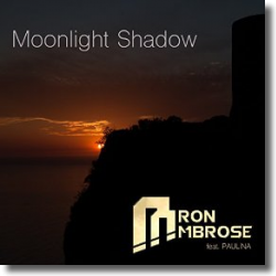 Cover: Aaron Ambrose feat. Paulina - Moonlight Shadow