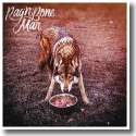 Cover: Rag'n'Bone Man - Wolves